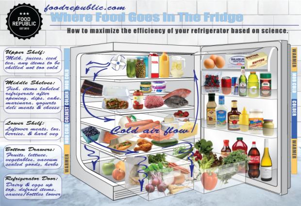 fridge layout
