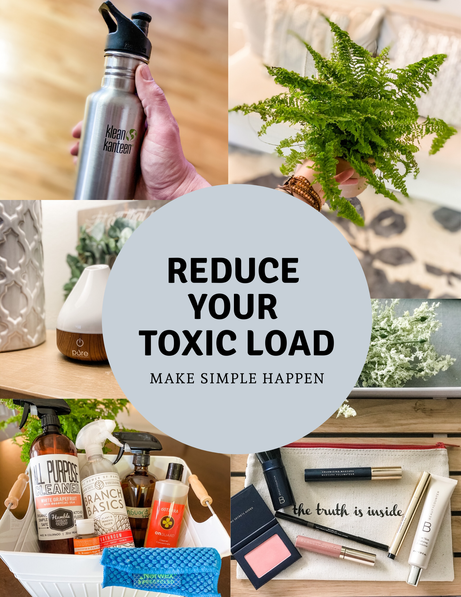 REduce your Toxic Load.png